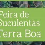 2⁰ FEIRA DE SUCULENTAS EM TERRA BOA